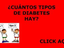 Cuales son los tipos de diabetes